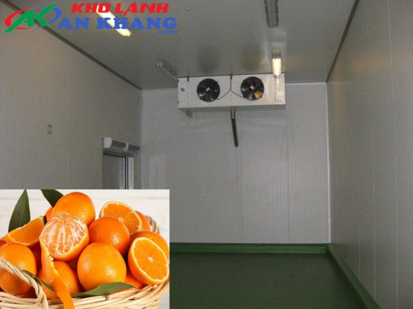 kho lạnh bảo quản trái Cam