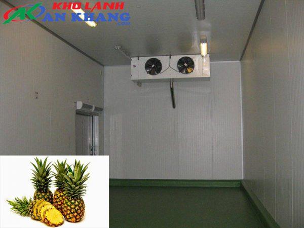 Kho lạnh bảo quản trái thơm