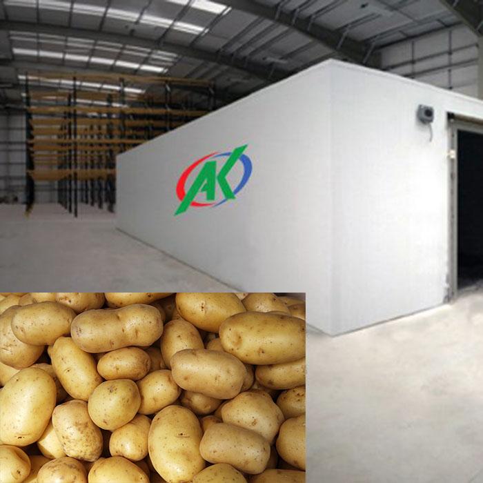 Kho lạnh bảo quản khoai tây