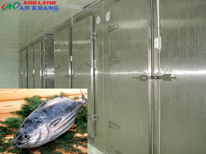 kho đông bảo quản cá ngừ