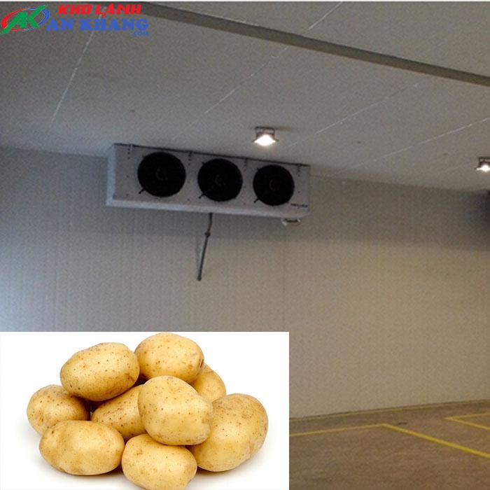 Kho lạnh trữ khoai tây