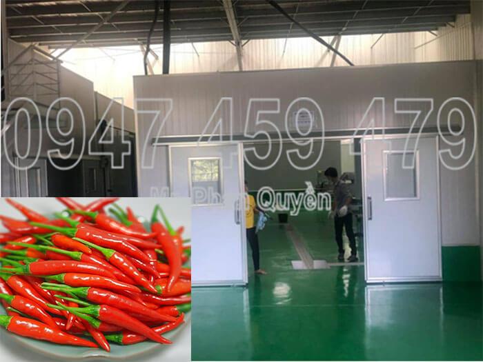 Kho đông trữ ớt Tây Ninh